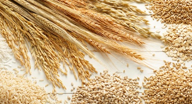 Heart Health Improved by Eating Wholegrains